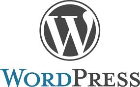 WordPress: resumen de vulnerabilidades hasta el 28 de julio